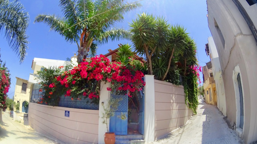 The subtropical garden gates covered in bougainvillea blooms